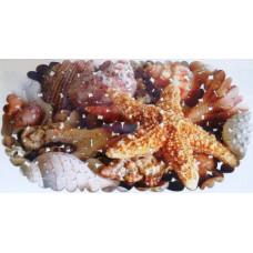 SPA-коврик фотопринт 67*36см,овал (морская звезда 2)