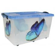 контейнер бабочка