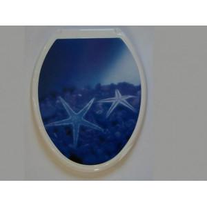 Крышка д/унитаза (жесткое) Конкорд морская звезда