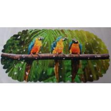 SPA-коврик фотопринт 67*36см, овал (попугаи)