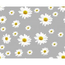 Клеенка Transparent PVC Tablecloth 1,37*30 прозрачная с рисунком TT-2584